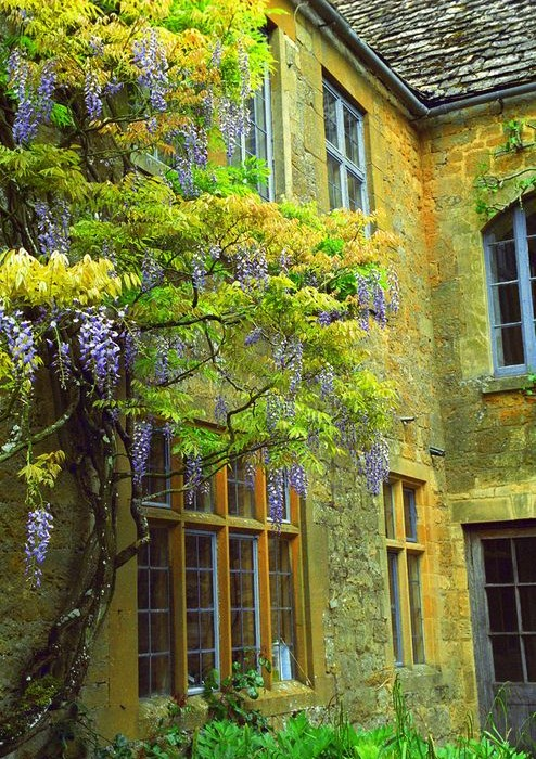 Hidcote, Cotswolds, England (by rick ligthelm)