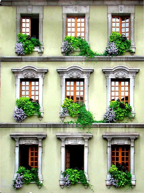 Windows, Venice, Italy 2